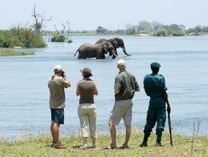 8 Days Global Development Workshop Tour and Safari in Malawi