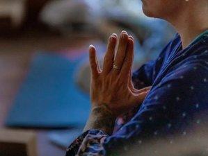 20-Hour Self-Paced Online Restorative Yoga Teacher Training