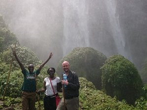 12 Days Chimps and Wildlife Safari in Uganda