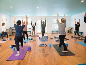 4 Day Streamside Yoga Retreat in the Catskills, New York