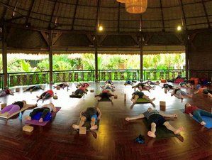 6 Days Adventure Meditation and Yoga Retreat in Bali, Indonesia