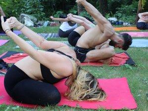 60 días 500 horas profesorado de yoga multiestilo en Rishikesh, India