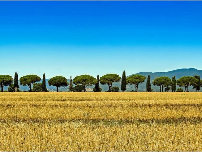 7 Days Yoga and Wine Tasting in Tuscany