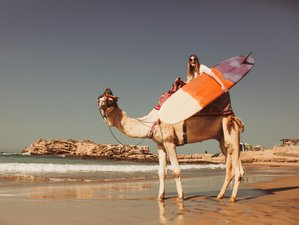 8 Day Surf & Relax with Wave Gypsy Surf Camp in Tamraght