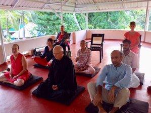 4 Day Monsoon Mini Break with Zen Meditation in Kerala, India