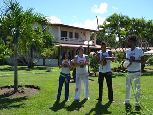 8 Day Capoeira Training Camp in Camaçari, Bahia