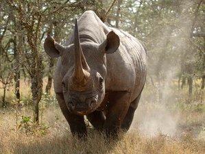 7 Days Perfect Blend Safari in Kenya