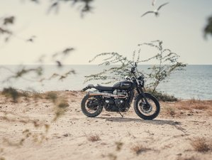Motorcycle: Triumph