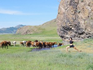 20 Days Unique Horse Riding, Meditation, and Yoga Tour in Mongolia