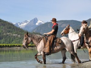 4 Day Grizzly and Black Bear Tracking on Horseback in South Chilcotin Mountains, British Columbia