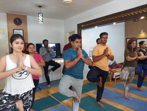 30 Tage 400-Stunden Yogalehrer Ausbildung für Fortgeschrittene in Pune
