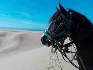 8 Days Paradise Valley and South Desert Horse Riding Tour in the High Atlas Mountains, Morocco