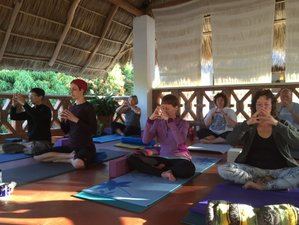 8 Days Deep Nourishment and Discovery Yoga Retreat in Punta de Mita, Mexico