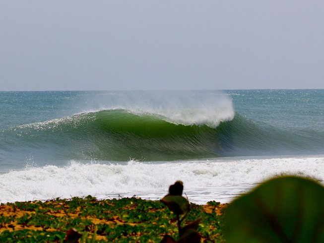 7 Days Uncrowded Panama Surf Camp