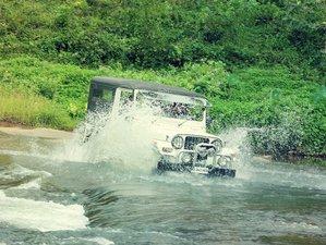 2 Day Jeep Safari in Munnar Mankulam Forest