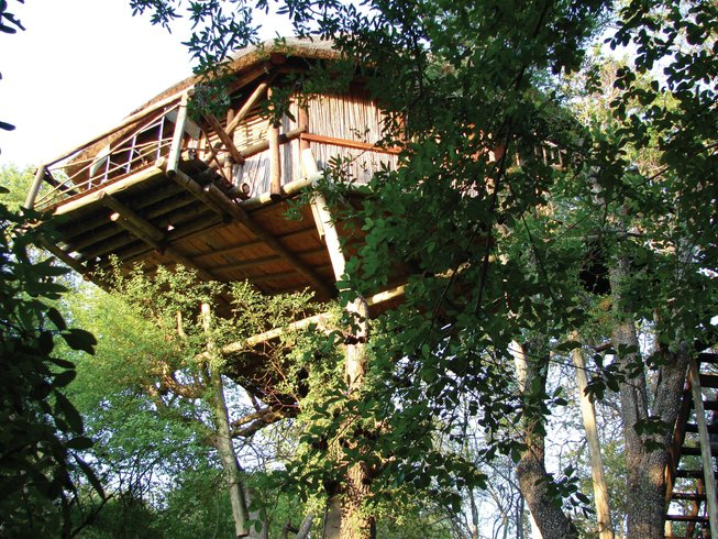 4 Days Kruger Lodge Treehouse Safari South Africa