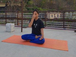 7 Days Anti-Aging Yoga Retreat in Mountains near Rishikesh, India