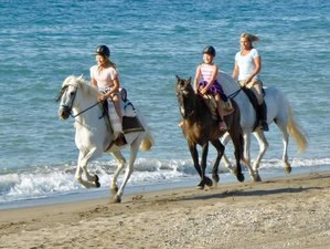5 Day Energy Boost, Beach Ride, Yoga & Horse Riding Holiday at Costa del Sol