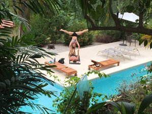 6 Days Surf and Yoga Retreat and Aerial Silk in Costa Rica