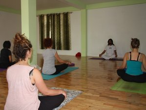 12 Day Himalayan Yoga Retreat