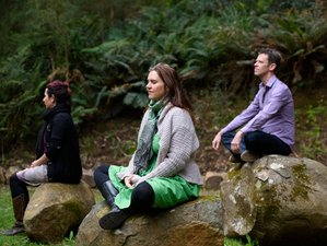 4 Days Inner Light Meditation and Yoga Retreat Australia