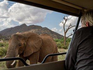 8 Days Thrilling Safari in Kenya