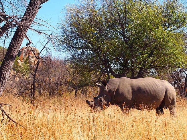 5 Days Mana Pools National Park Safari in Zimbabwe