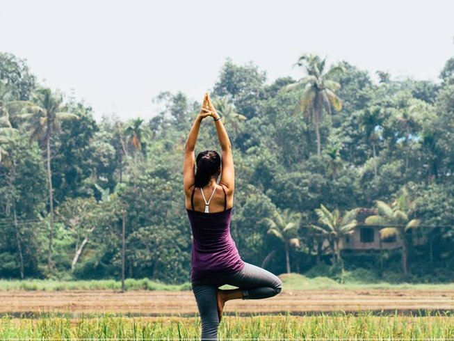 6-Daagse Ayurveda en Yoga Retraite in Kerala, India