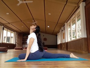 28 Day 200-Hour Affordable and Certified Online Yoga Teacher Training