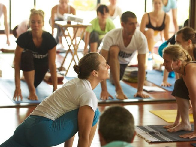 8 Days Meditation and Ashtanga Yoga Retreat Thailand