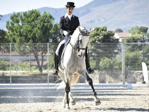 13 Days Competition Training Horse Riding Program in Esposende, Portugal