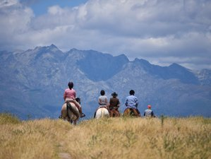 9 Day South Transhumance Horse Riding Tour in Spain