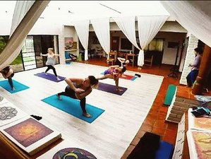 28 Day 200-Hour Vinyasa & Hatha Yoga Teacher Training in Cuenca with Sacred Plant Medicine