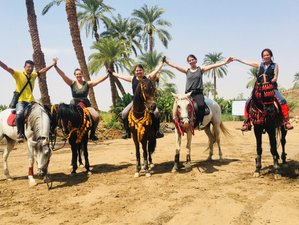 8 Days Palms, Pyramids, and Pharaohs Horse Riding Holiday in Cairo, Luxor, and the Red Sea in Egypt
