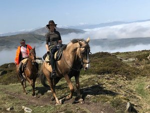 8 Day Progressive Scenic Horse Riding Trail from Burgos to Santander, Spain