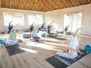 27 Day 200-Hour Immersion to Yogic Lifestyle Yoga Teacher Training in Todos Santos, Baja Sur