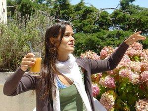 7 Days Detox and Yoga Retreat Portugal