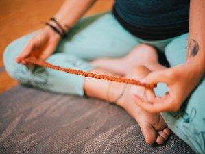 3 jours en week-end de yoga hatha, nidra et naturopathie dans un mas provençal à Cabannes