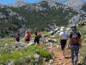 6 Day Hiking and Yoga Retreat for Nature Lovers at Suryalila in Villamartín, Cádiz