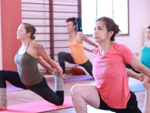 27 Day 300-Hour Hatha Yoga Teacher Training in Mysore