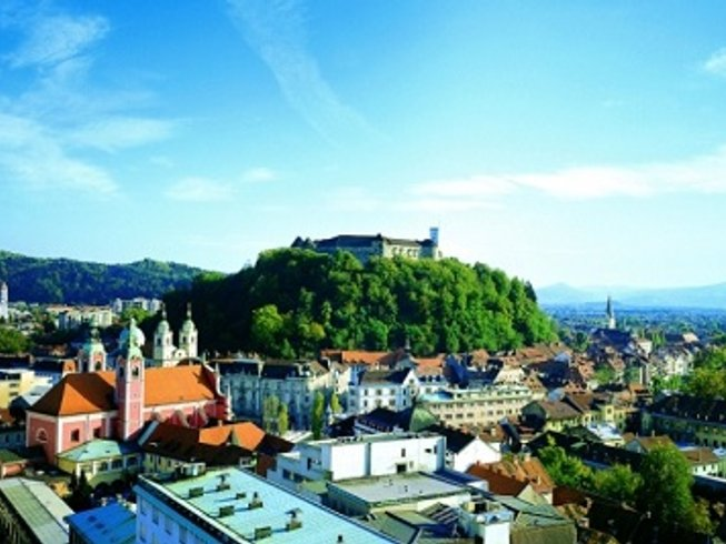 5 Days Wine Tasting, Oil and Food Tour in Slovenia