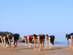 6 Day Jungle Ashtanga and Hatha Yoga Retreat with Yoga Philosophy in Agonda, Goa