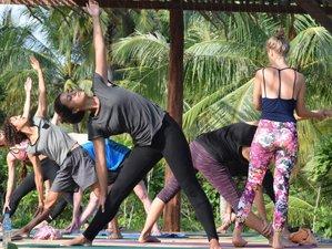 7 jours en stage de yoga, énergie et médecine ayurvédique dans la nature
