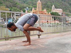 14 Days Immersive 100-Hour Yoga Teacher Training in the World's Capital of Yoga, Rishikesh, India