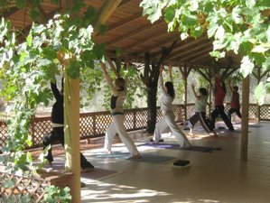 8 Days Yoga and Writing Retreat in Turkey