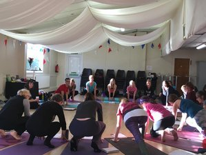 5 Days Meditation And Spirituality Of Yoga Retreat In Snowdonia Uk Bookyogaretreats Com