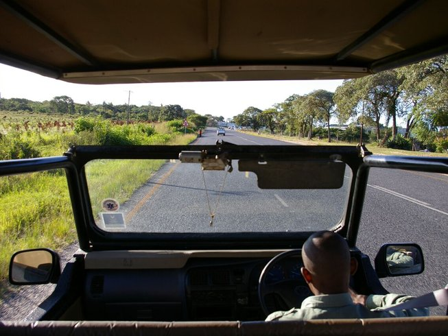 3 Day Kruger National Park Safari in South Africa