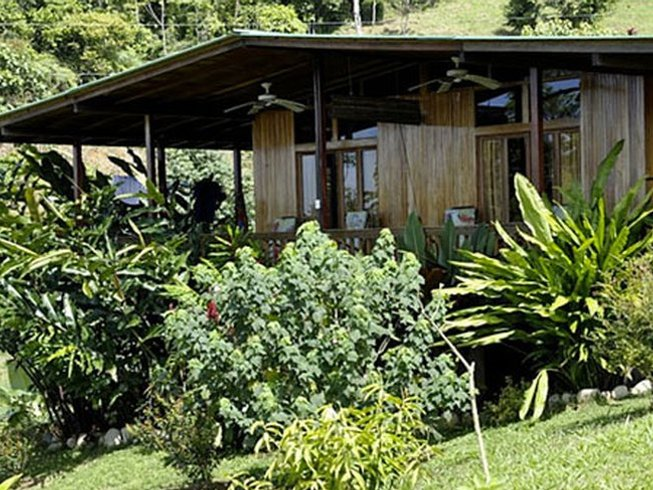 8 Days Raw Food and Yoga Retreat in Costa Rica