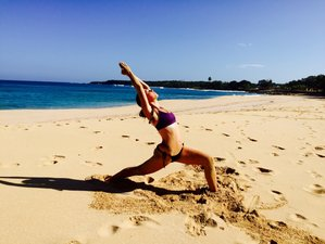 5 Days Rincon Yoga and Surf Retreat Puerto Rico