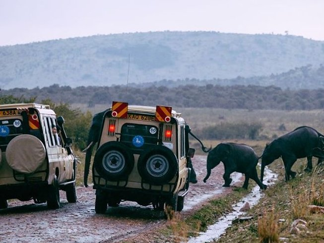 12 Days Walking Safari South Africa, Botswana, and Zimbabwe